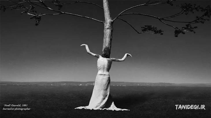 تظاهر Noell Oszvald Surrealist photographer
